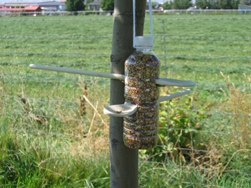 Blog get plastic bottles out of the trash fun ways to for How to make a bird feeder using a plastic bottle